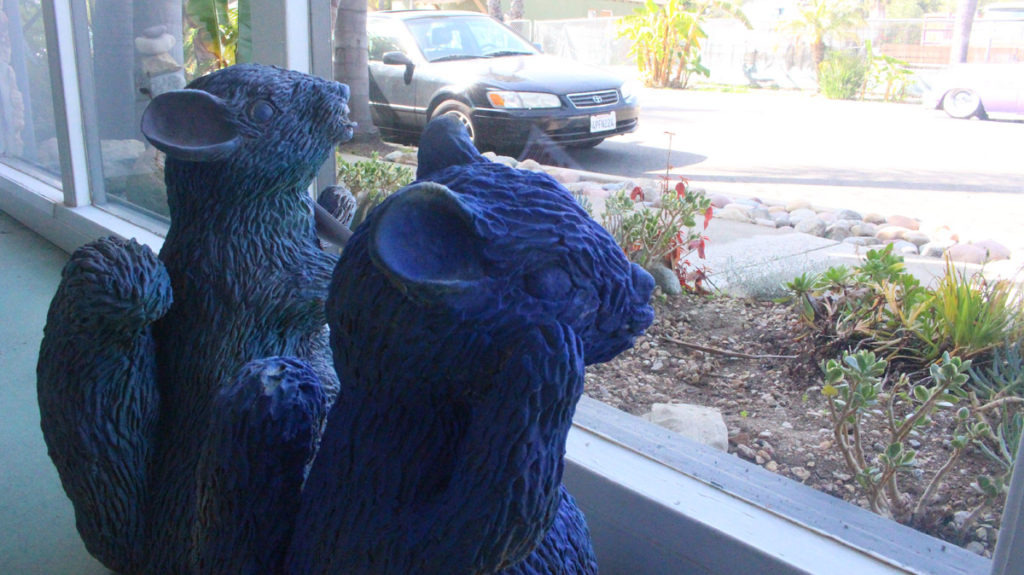 The Squirrels of Los Molinos Street in San Clemente have been in residence for several years. (Jon Boardman)