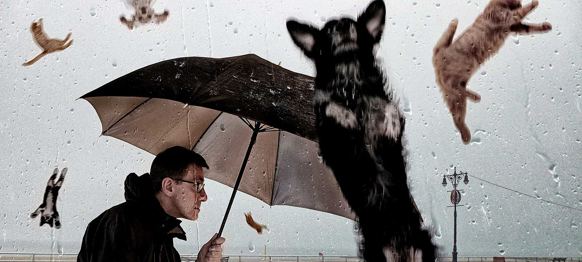"""Raining Cats and Dogs"" by David Blackwell on Flickr. Used with a (CC BY-ND 2.0) license. https://www.flickr.com/photos/mobilestreetlife/12505752913"